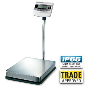 CAS BW Digital Weighing Scale - SWIA