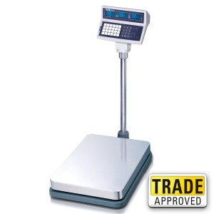 CAS EB Price Computing Floor Scale - SWIA