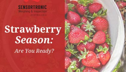 Strawberry Season in SWIA